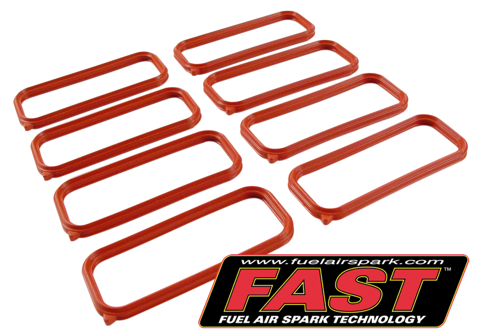 98-02 LS1 FAST LSX Intake Port Seal Kit (Set of 8)