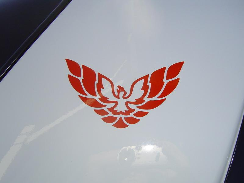 "93-02 Firebird/Formula/Trans Am ""A"" Pillar Decals"