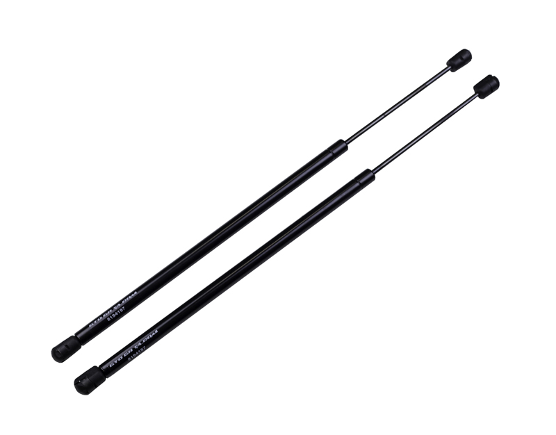 98-02 Firebird Trans Am WS6 Performance Years Hood Lift Supports - Black Finish