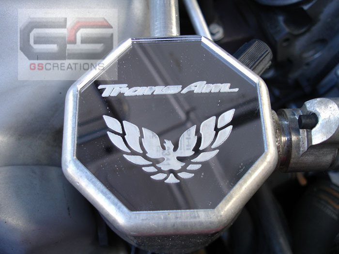 "82-02 Fbody GSCreations AC Condenser Cover w/""TransAm"" & Bird Logo"